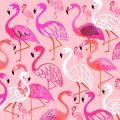 summer_flamingos_01